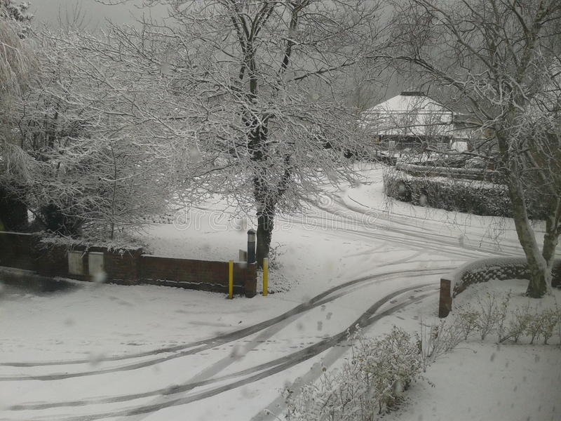 Schnee? stockfotos