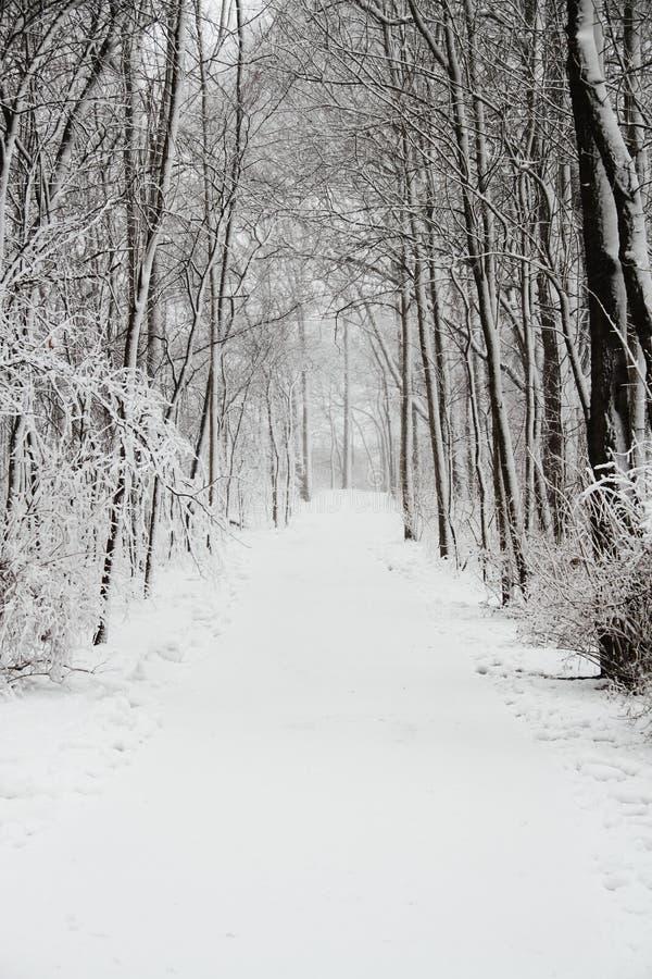Schnee-Abdeckung-Spur lizenzfreies stockbild