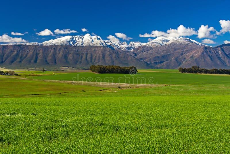 Schnee auf Bergen mit grünem Feld lizenzfreie stockbilder