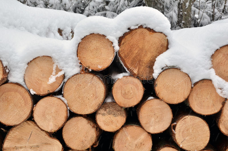 Schnee auf dem timberstack lizenzfreie stockfotografie