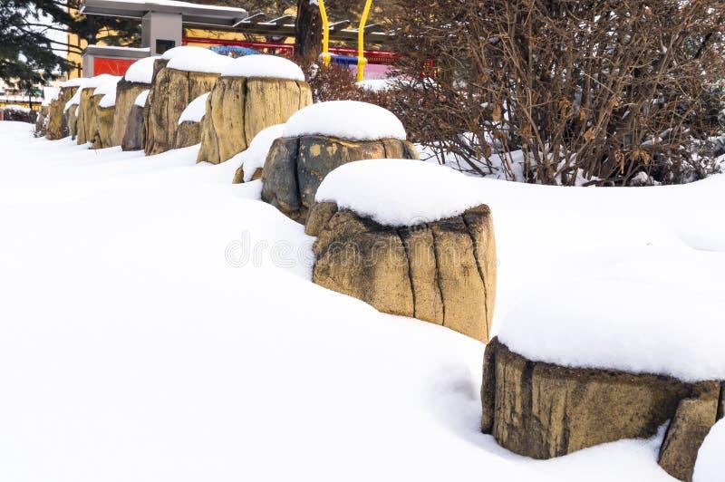 Schnee auf einem hölzernen Stumpf Hallo Winter stockbild