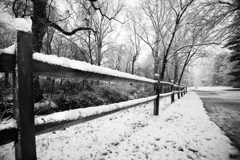 Schnee auf Zaun stockfoto