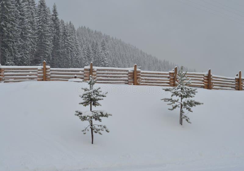 Schnee bedeckte Berge, Winterhintergrund mit Kopienraum stockfoto