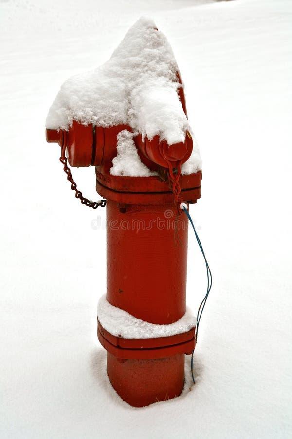 Schnee bedeckte Hydranten stockfotos