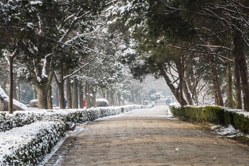Schnee bedeckte Ming-Grab-Gottheitsweg stockfotos