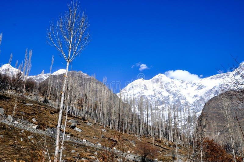 Schnee bedeckte Spitzen in der Karakoram-Gebirgsstrecke mit einer Kappe stockbild
