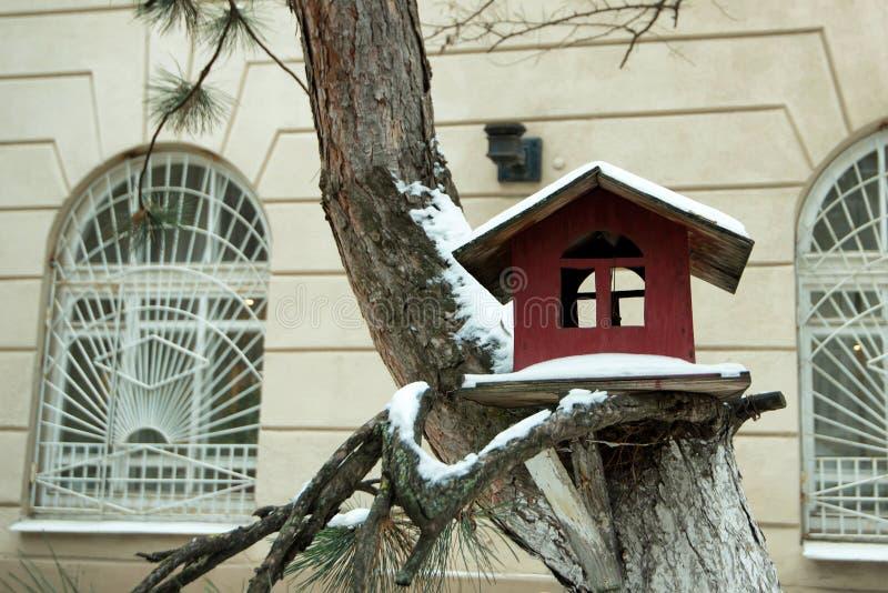 Schnee bedeckte Vogelhaus im Winter lizenzfreies stockfoto
