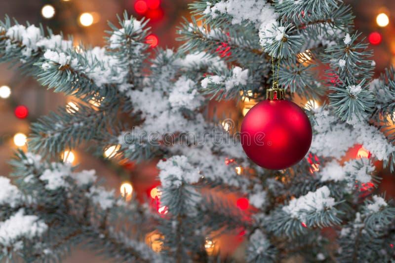 Schnee bedeckte Weihnachtsbaum mit dem Hängen der roten Verzierung stockfoto