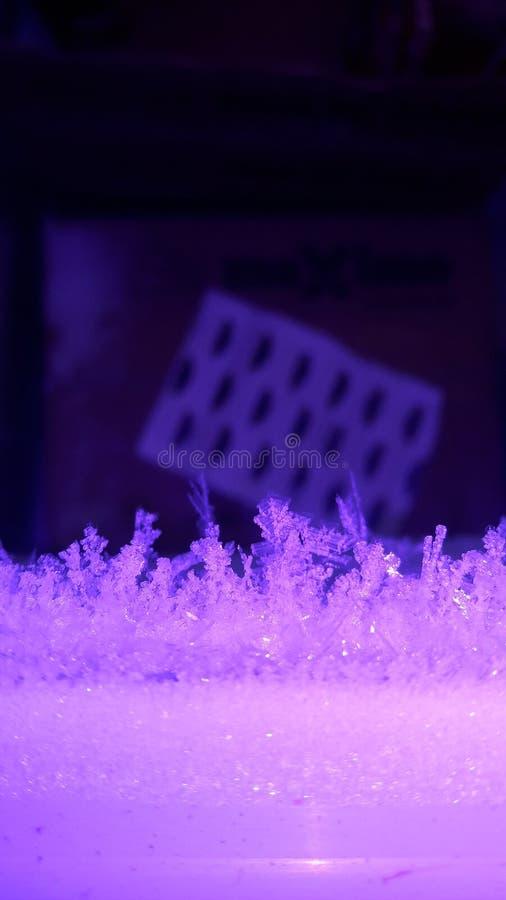 Schnee blättert Konzept ab stockbild