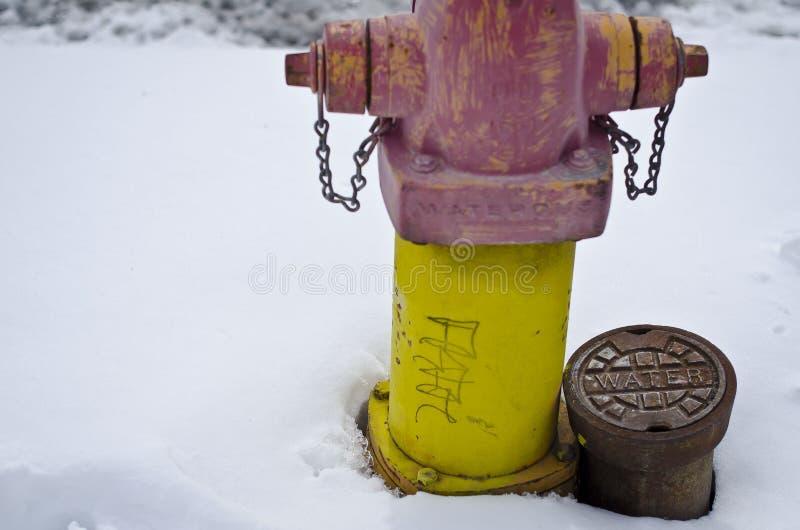 Schnee coverer Park-Feuerhydrat stockbilder