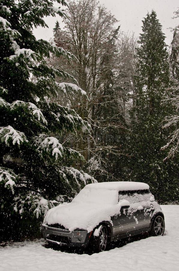 Schnee deckte Mini Cooper ab lizenzfreie stockfotos