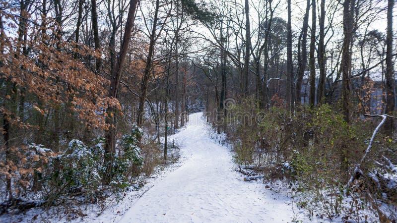 Schnee deckte Pfad ab lizenzfreies stockfoto