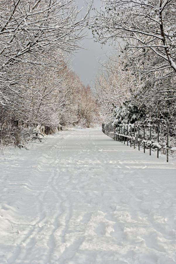 Schnee deckte Pfad ab lizenzfreie stockbilder