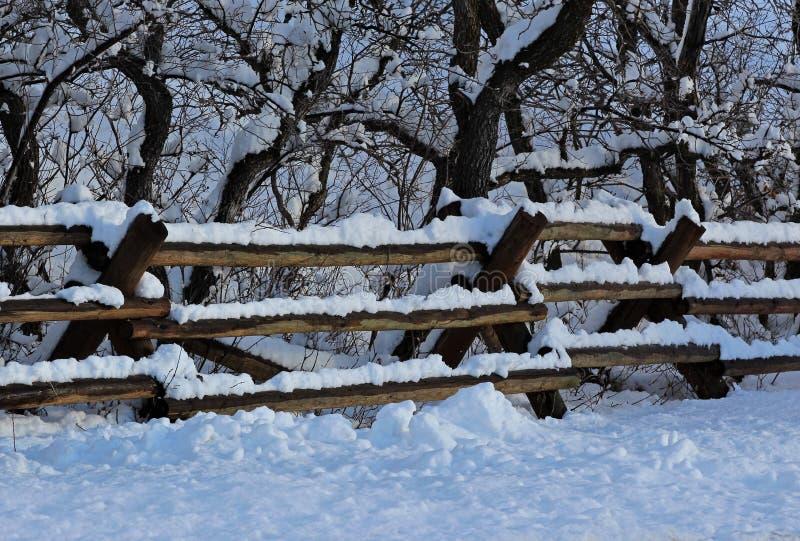 Schnee deckte Zaun ab stockfoto