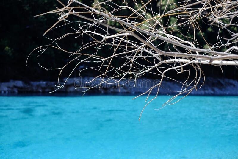 Schnee-Gebirgsblauer Mond-Tal-Naturschutzgebiet Yunnans Yulong lizenzfreie stockfotografie