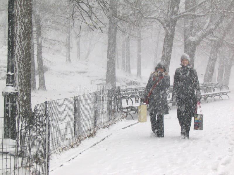 Schnee im Park stockfotos