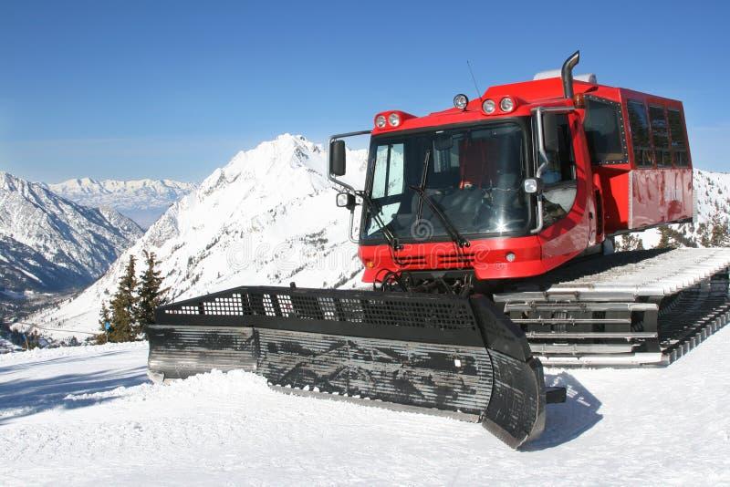 Schnee-Katze und Berg im Winter stockbilder