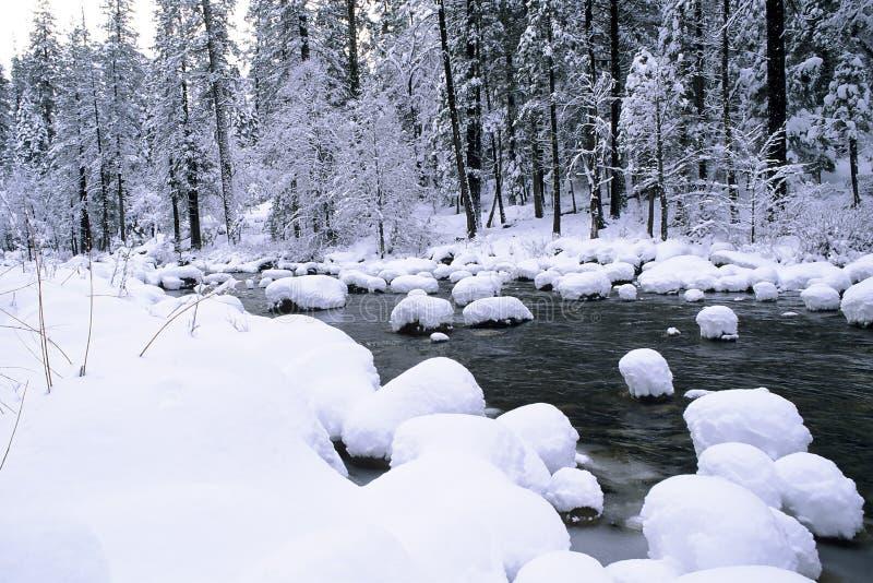 Schnee-Kegel stockbilder
