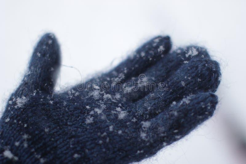 Schnee in meiner Hand lizenzfreie stockfotografie