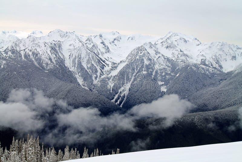 Schnee-mit einer Kappe bedeckter Gebirgszug über einem Snowy-Feld hinaus stockfoto