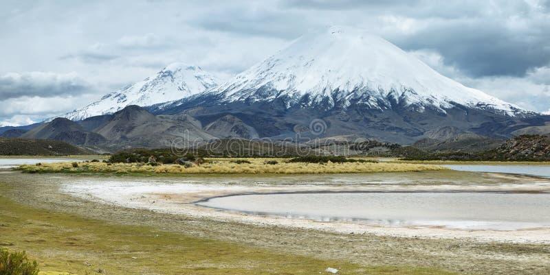 Schnee mit einer Kappe bedeckter Parinacota-Vulkan stockbild