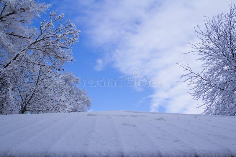 Schnee mit einer Kappe bedeckter Park lizenzfreie stockfotos
