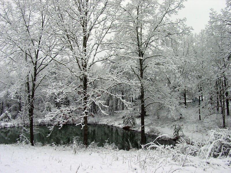 Schnee-Teich lizenzfreie stockbilder