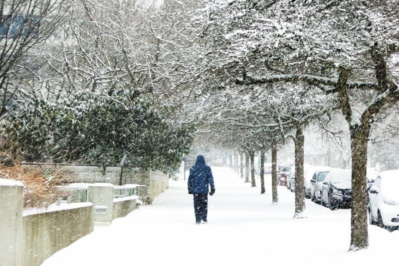 Schnee umfasste Baumlinie dieser Bürgersteig, wie eine Person auf den Bürgersteig geht lizenzfreies stockfoto