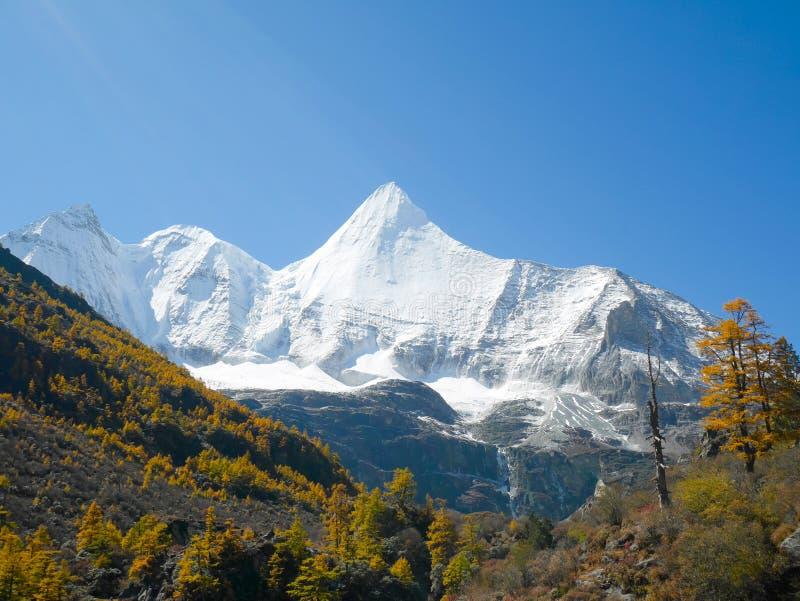 Schnee umfasste Bergspitzen im Yading-Naturreservat stockbild