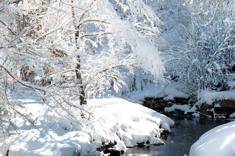 Schnee umfasste Park- und Stromlandschaft lizenzfreies stockbild