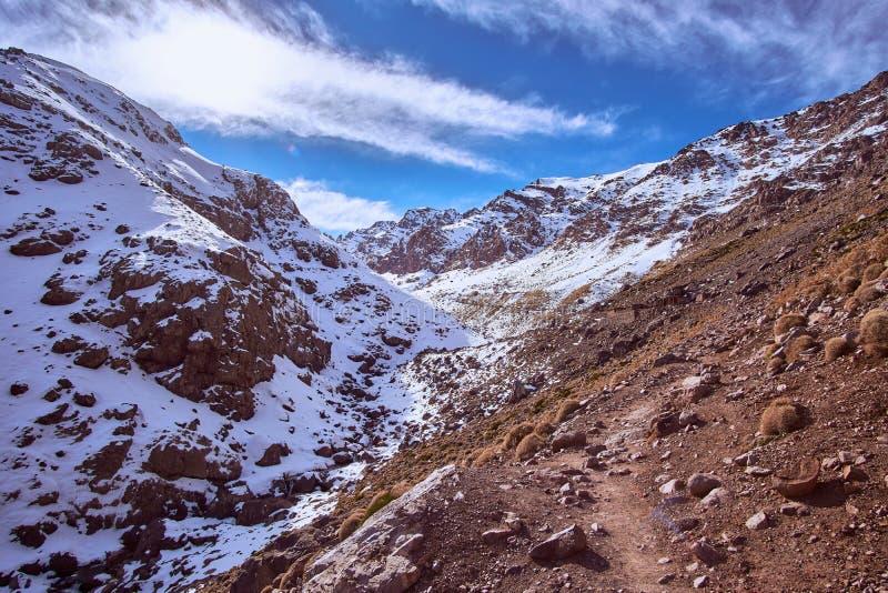 Schnee umfasste Spitzen von hohen Atlasbergen stockfotos