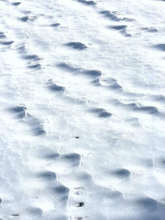 Schnee- und Eisuntergrund stockfoto