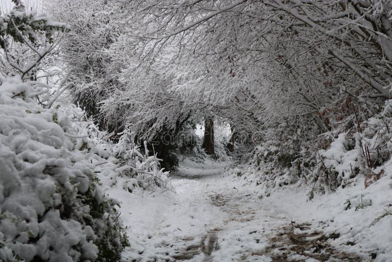 Schnee-Winter-Bögen in Waliser-Landschaft lizenzfreie stockbilder
