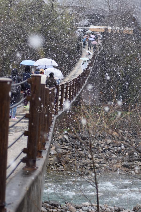 Schnee-Winter-Frühlings-Brücken-Fluss-Baum Shirakawago-Gebirgshaus-Architektur Japan stockbilder