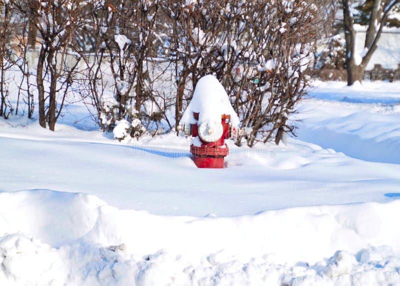Schnee wird auf roten Hydranten nach Wintersturm im Februar angehäuft stockbilder