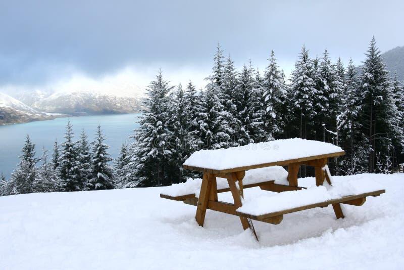 Schneeansicht von Queenstown, Neuseeland stockfotografie