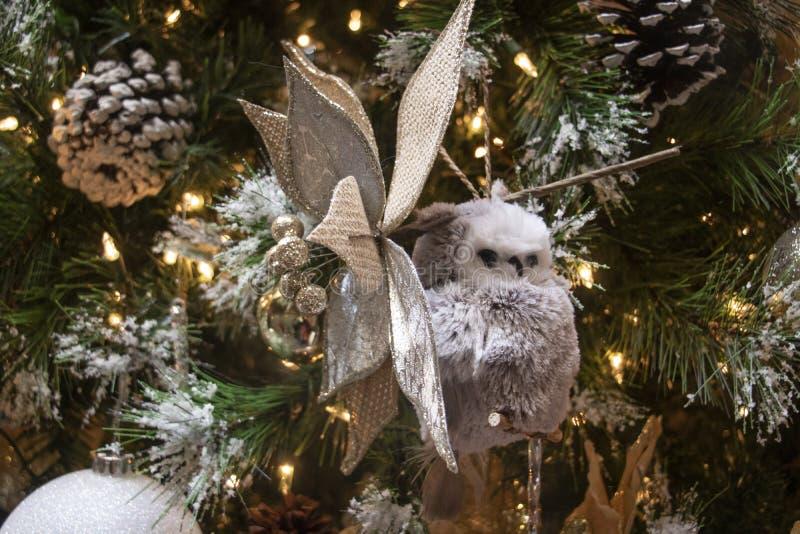Schneeaul- und Kiefernzapfen auf einem frostigen Weihnachtsbaum lizenzfreie stockfotografie