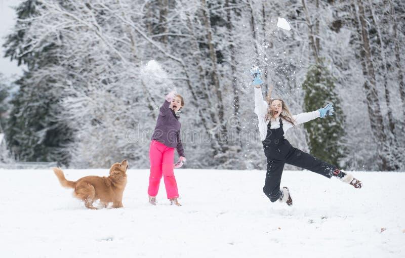 Schneeballkampf im Winter stockbild