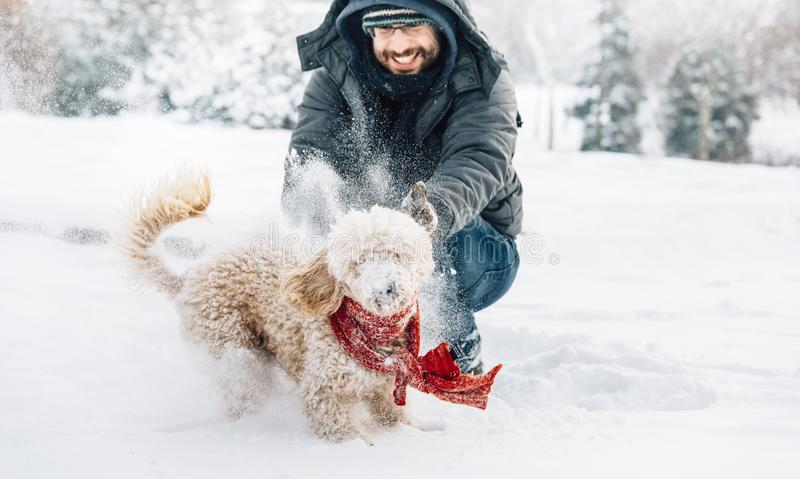 Schneeballkampfspaß mit Haustier und seinem Inhaber im Schnee Winter ho lizenzfreies stockfoto