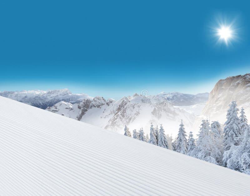 Schneebedeckte Landschaft des Winters lizenzfreie stockfotos