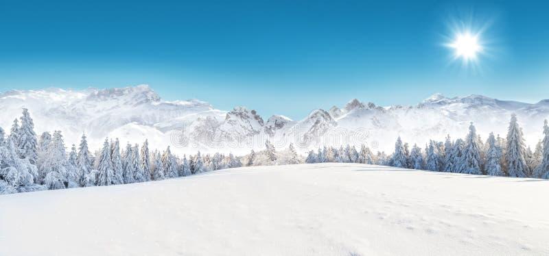 Schneebedeckte Landschaft des Winters stockbild