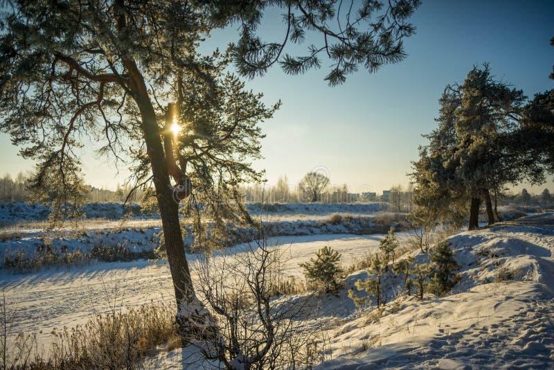 Schneebedeckte Landschaft des Winters in der russischen Kälte stockbild