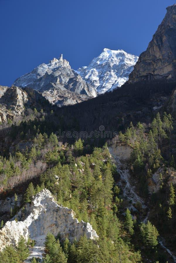 Schneebedeckte Spitzen des indischen Himalajas nahe Gangotri stockfotografie