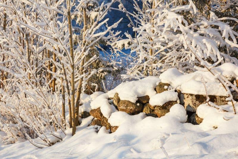 Schneebedeckte Steinmauer im Winter stockbilder