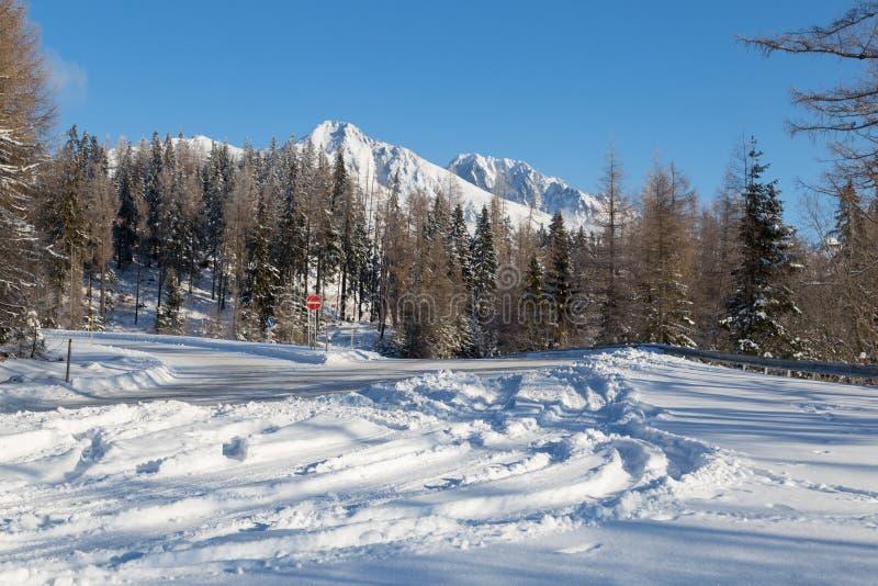 Schneebedeckte Straße des Winters mit Ansichten von Bergen der schneebedeckten Spitzen stockbild