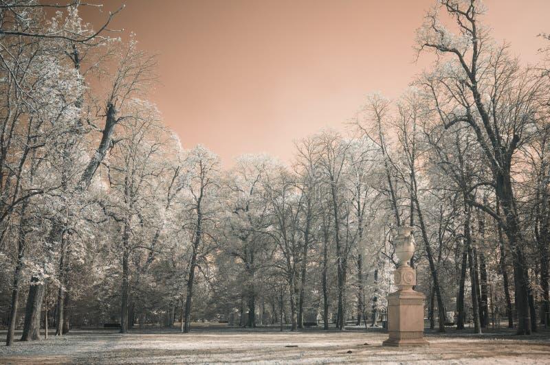 schneebedeckter Hintergrund der Schönheit für Ihre Auslegung lizenzfreies stockfoto