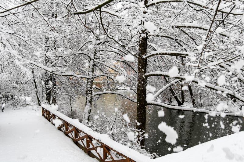 Schneebedeckter Szenefluß der Schönheit und enorme Schneeflocken der Bäume stockfoto