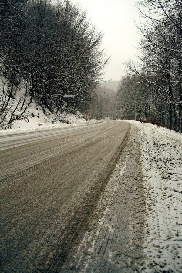schneebedeckter Tag lizenzfreie stockfotografie