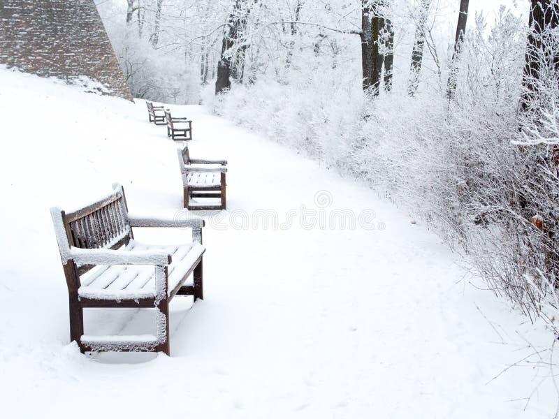 Schneebedeckter Weg im Park mit Bänke und Büschen stockbild