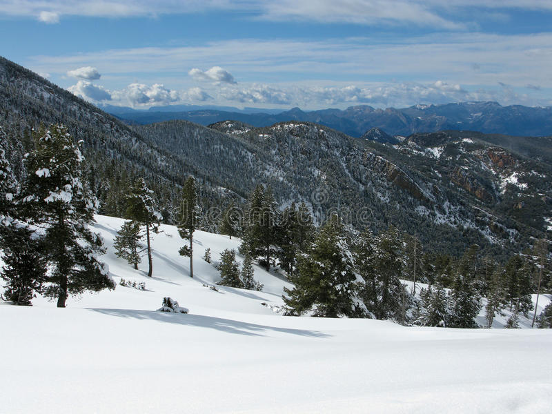 Schneeberg Pyrenees lizenzfreie stockfotos